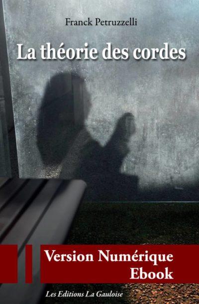 """Couverture ebook """" La théorie des cordes """" de Franck Petruzzelli"""