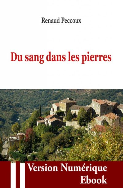 """Couverture ebook """" Du sang dans les pierres """" de Renaud Peccoux"""