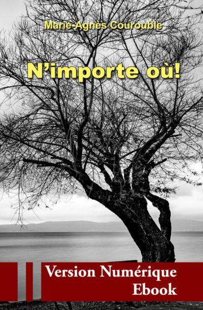 """Couverture ebook """" N'importe où ! """" de Marie-Agnès Courouble"""